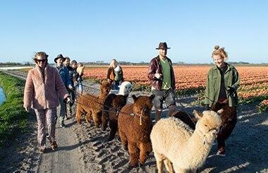 boerderijwandeling-3